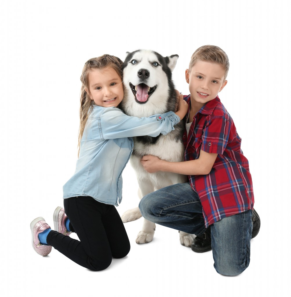 Shutterstock 776989939