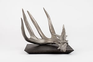Antler Design Concepts