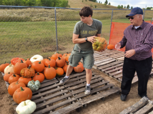 A volunteer helps unload pumpkins at the Canyon Lake United Methodist Church. The arrival of the pumpkins heralds a nearly quarter-century-old tradition of pumpkins at the church. Photo Date: Sep. 26, 2018.