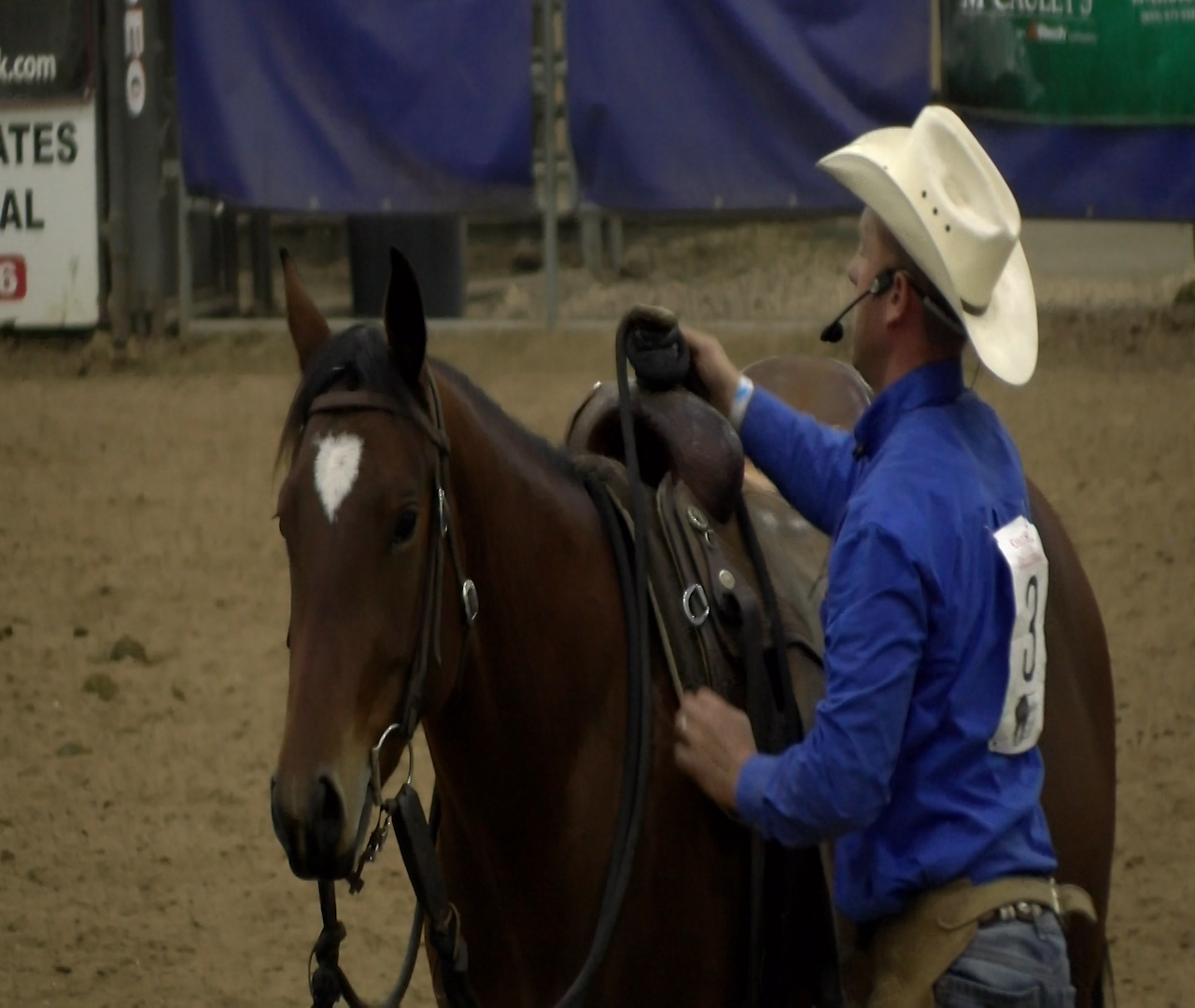 Equines entertain at 2018 Black Hills Horse Expo - KNBN NewsCenter1