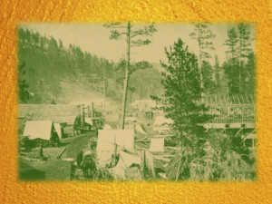 Preservation Thursday: The Origin of the Black Hills National Forest: 1875-1907 @ Homestake Adams Research and Cultural Center | Deadwood | South Dakota | United States