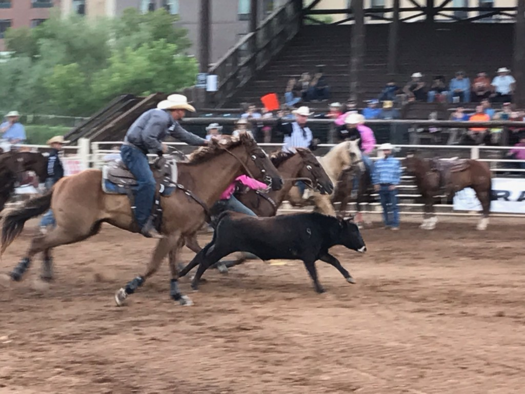 Days Of 76 Rodeo Texas Cowboy Takes The Lead In The