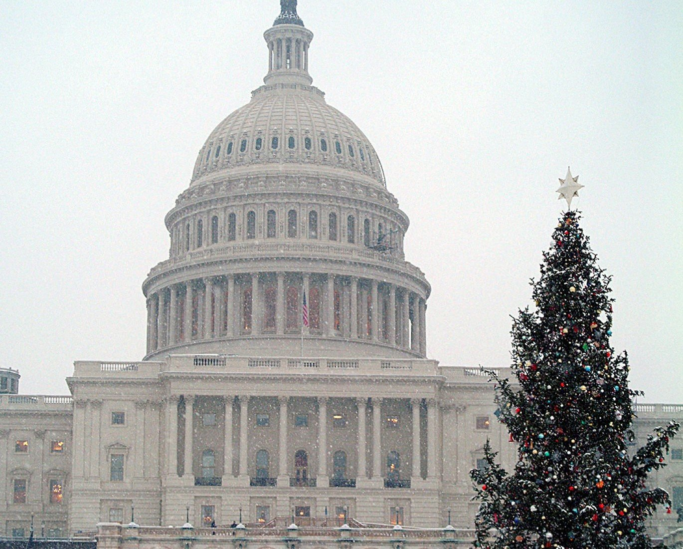 Capitol Christmas Tree.Ban Could Block Capitol Christmas Tree From New Mexico