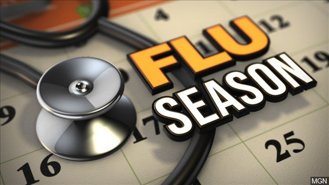 Flu Season Graphic