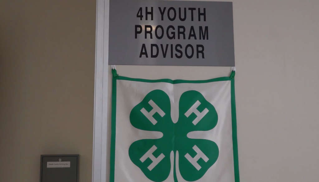 4-H Youth Program Advisor