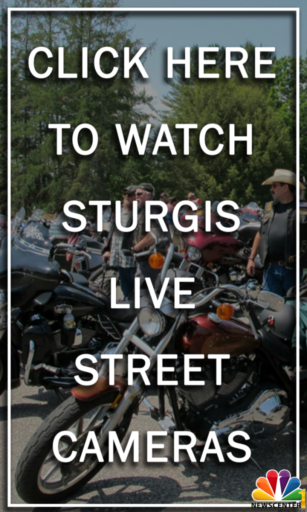 Sturgis Live Cams Tall Banner 1