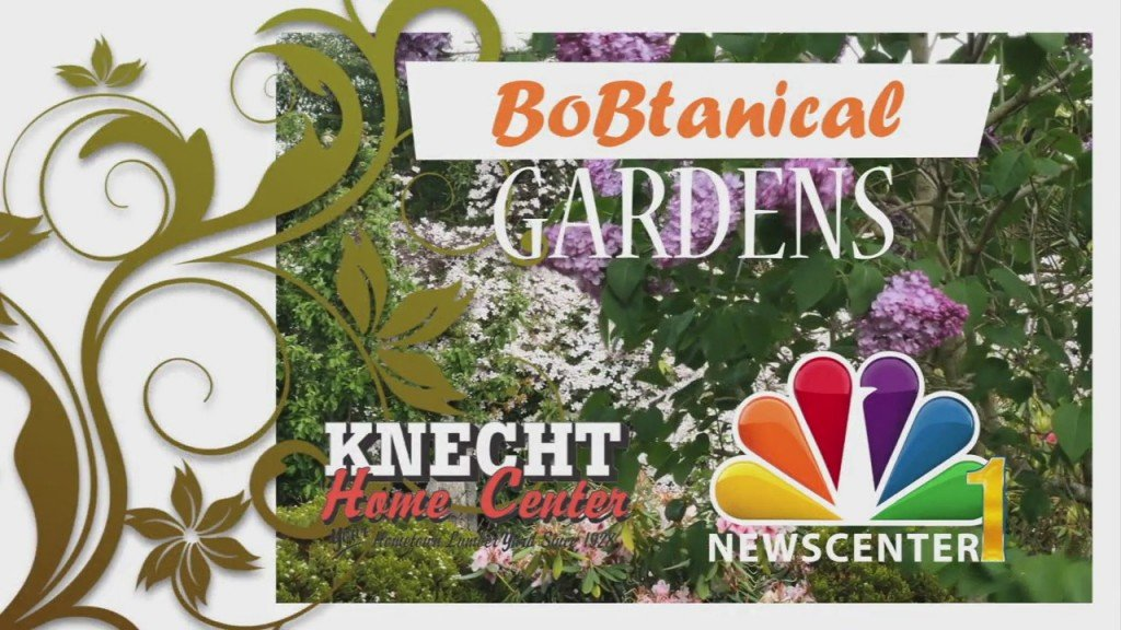 Bobtanical Garden Preserving Seeds