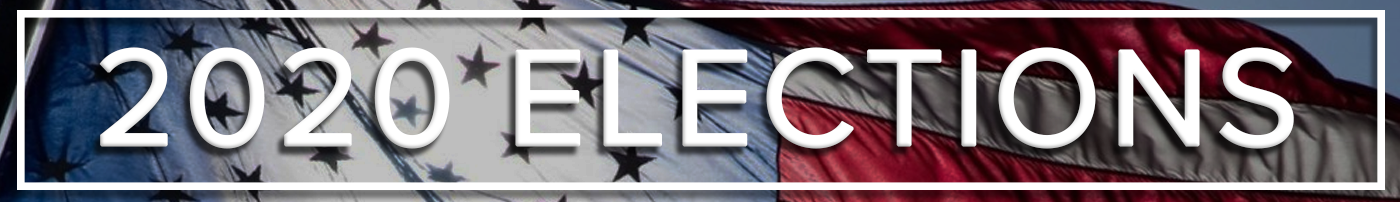 2020 Elections Banner Skinny 1