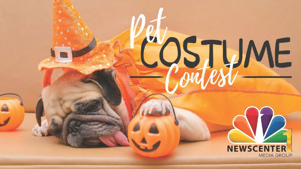 Pet Costume On Air Graphic