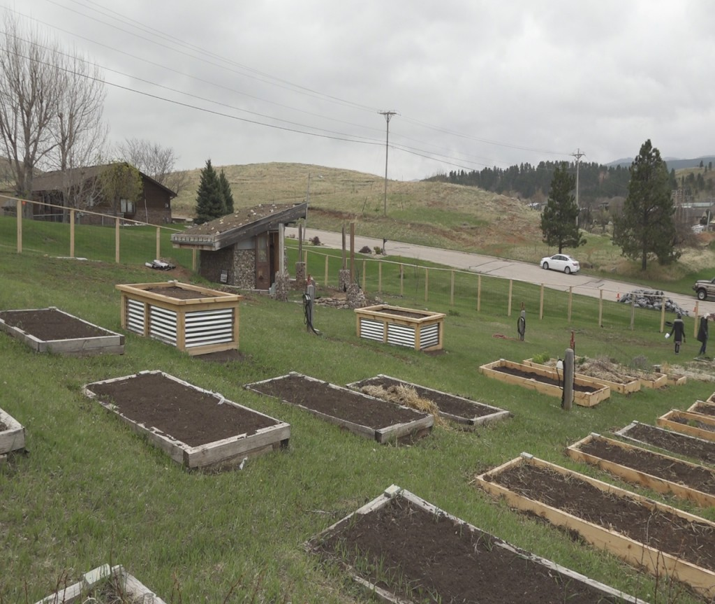 Spearfish Community Garden 4