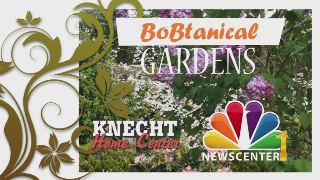 Bobtanical Gardens Cold Weather Planting