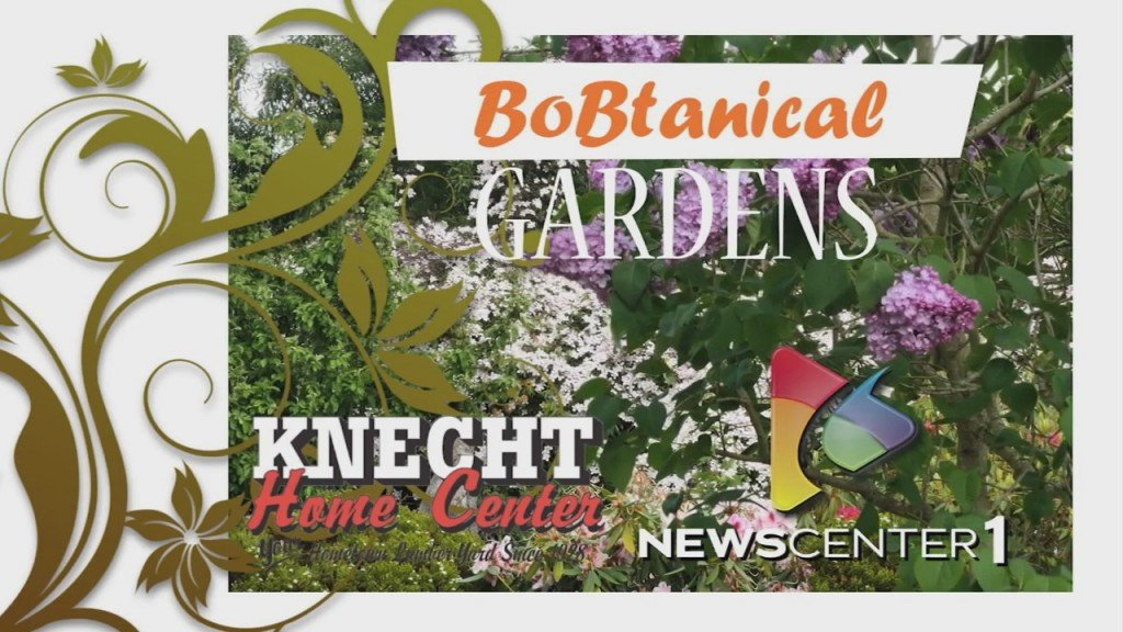 Bobtanical Gardens All About Beets