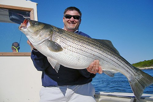Pay attention to new striper fishing regs in ohio waters for Bass fishing in ohio