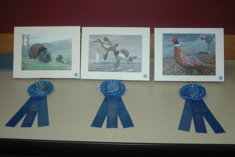 These Three Paintings Took Top Honors In The 2017 State Turkey Waterfowl And Pheasant Stamp Contests Photo By Tim Eisele