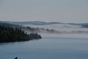 Hungry wolves relocated to Isle Royale National Park