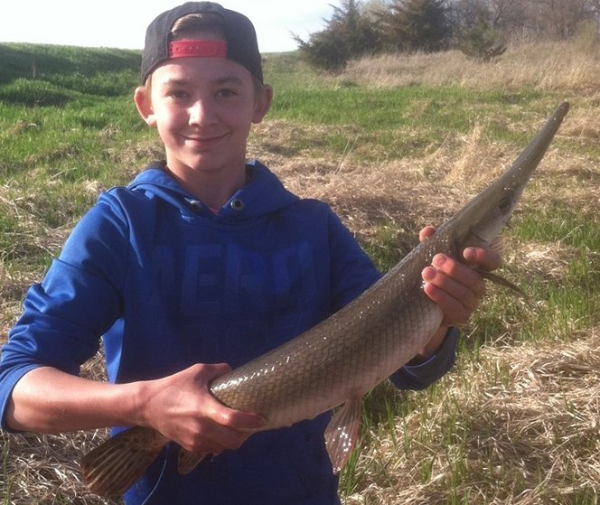 State record fish applications coming in droves outdoornews for Illinois fishing regulations 2017