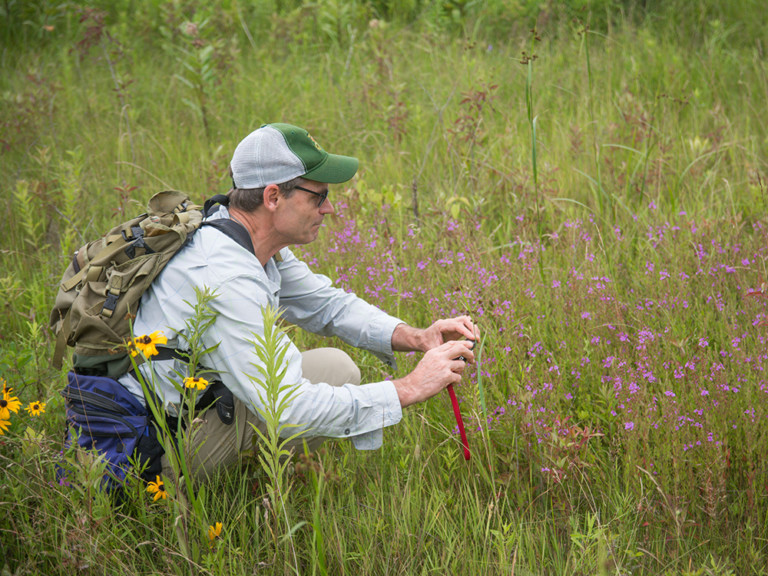 Botanists rediscover rare flower in vermont outdoornews for Vermont fish and wildlife