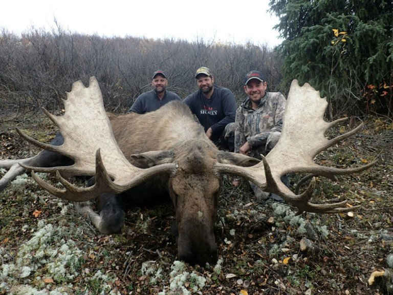 Two Brothers From Melrose Bag Pair Of Huge Yukon Moose