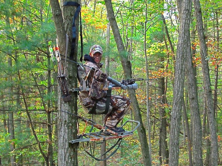 A Case For Earlier Tree Stand Placement For Pennsylvania