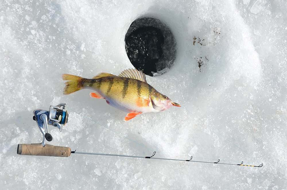 Outdoornews hunting fishing mn wi il mi pa oh ny for Pa ice fishing