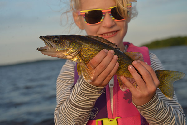 June2020blog2 Walleye