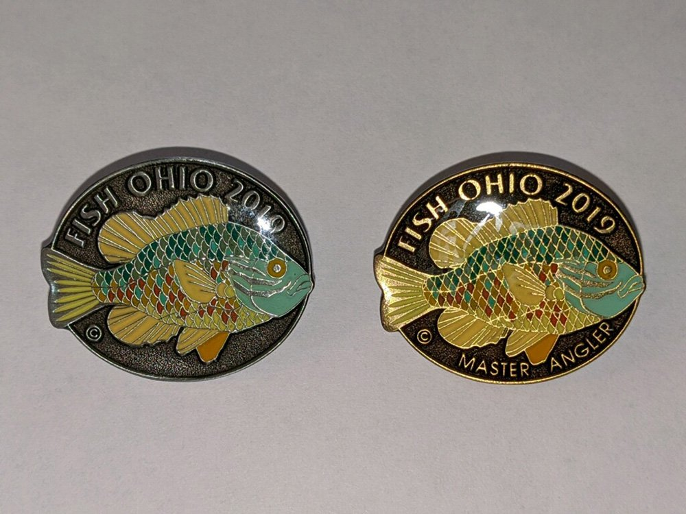 Fish Ohio Pins