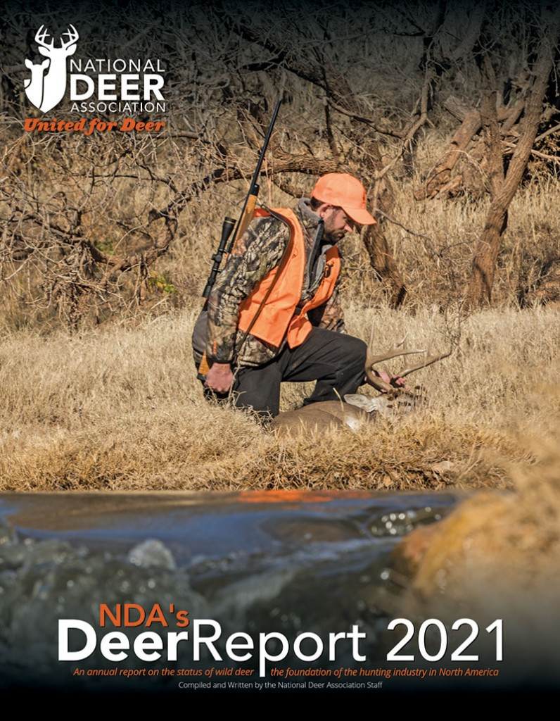 Dr2021 Cover 1