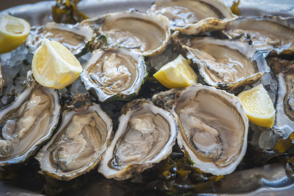 Oyster Prep Your Palate For A Weekend S Worth Of Briny Bivalves On The Waterfront Newport Festival Presented By Bowen Wharf Company