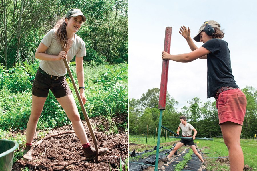 Soil Sisters Are Digging In At Sidewalk Ends Farm - Rhode