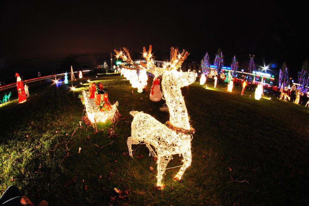 Christmas Tree Warwick Ri