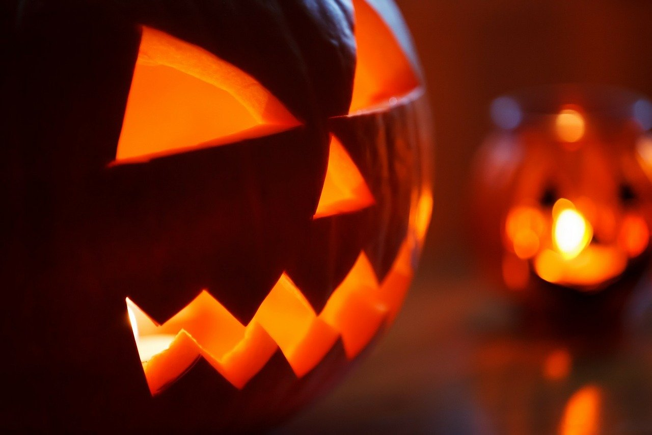7 tips for the jack-o-lantern spectacular - rhode island monthly