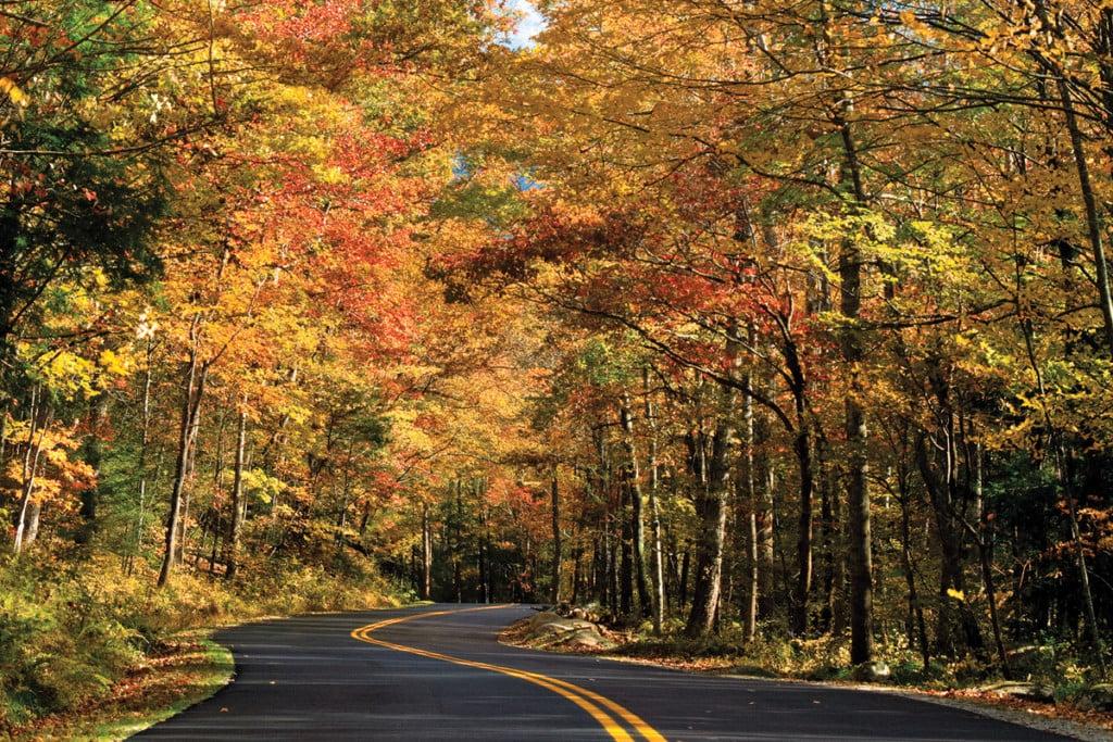 fall day trips