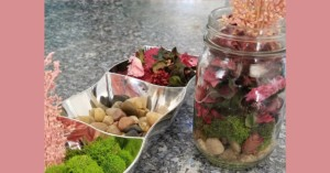 Build Your Own Terrarium and Brunch @ Chair 5 |  |  |