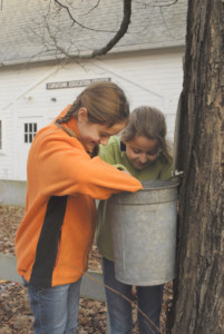 Audubon Maple Sugaring and Pancake Breakfast @ Audubon Caratunk Willdife Refuge | Seekonk | Massachusetts | United States