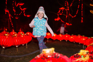 13th Annual Illuminated Garden at Ballard Park @ Ballard Park | Newport | Rhode Island | United States