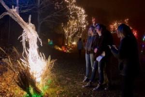 Illuminated Garden @Ballard Park @ Ballard Park | Newport | Rhode Island | United States