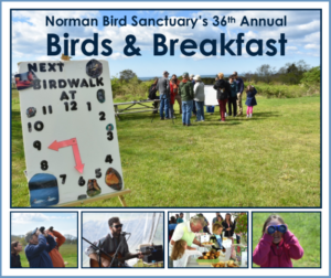 Norman Bird Sanctuary's 36 Annual Birds and Breakfast @ Norman Bird Sanctuary