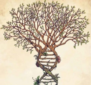 Diggin' Your Roots: Intro to Genealogy at PPL @ Providence Public Library | Providence | Rhode Island | United States