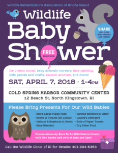 Wildlife Baby Shower @ North Kingstown Community Center | North Kingstown | Rhode Island | United States