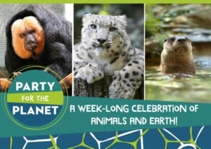 Party for the Planet @ Roger Williams Park Zoo