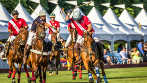 Independence Cup @ Newport Polo