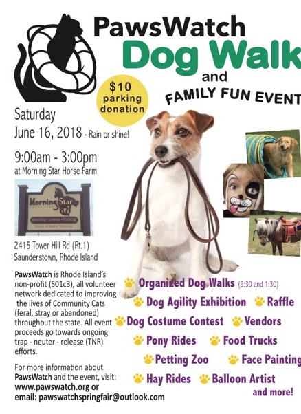 dog walk and family fun day rhode island monthly