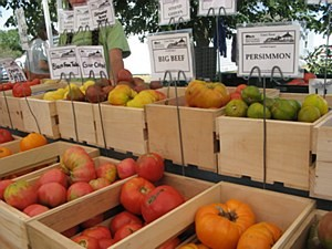 Taste of the Market @ Casey Farm