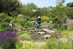 Green Scene Panels at Blithewold @ Blithewold Mansion, Gardens and Arboretum   Bristol   Rhode Island   United States