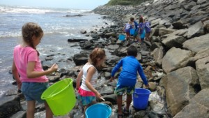 Newport Half-day Junior BayCamp with Save The Bay @ Save The Bay Exploration Center and Aquarium | Newport | Rhode Island | United States