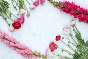 Spring Equinox Craft Night @ Wild Witches | North Providence | Rhode Island | United States
