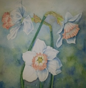 Botanical Watercolor with Elizabeth O'Connell @ The Bristol Art Museum | Bristol | Rhode Island | United States