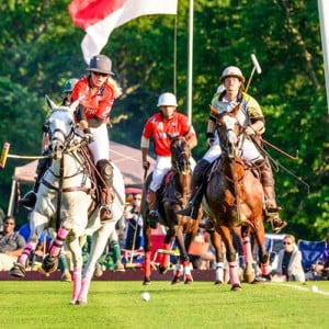 Newport vs. Pittsburgh @ Newport Polo | Portsmouth | Rhode Island | United States