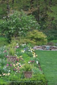 The Gardens of Blithewold: The North Garden @ Blithewold Mansion, Gardens, and Arboretum   Bristol   Rhode Island   United States