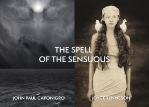 Art Exhibit: The Spell of the Sensuous - Photography of John Paul Caponigro and Joyce Tenneson @ YJ Contemporary Fine Art | East Greenwich | Rhode Island | United States